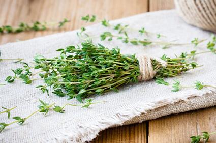 vahos con plantas medicinales